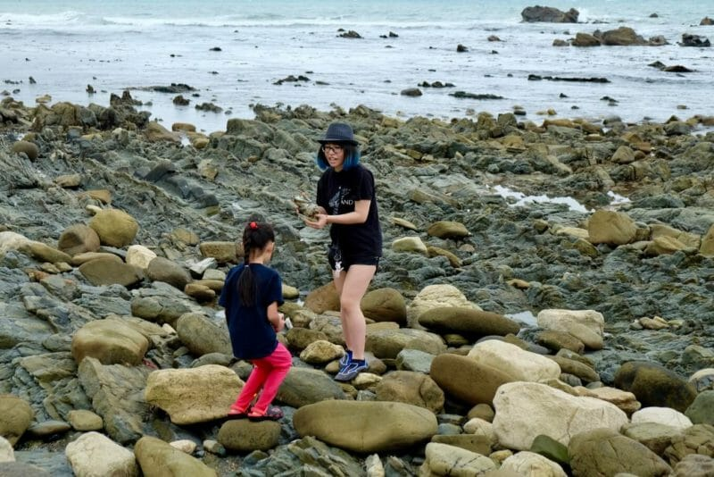rocky-wairarapa-coastline