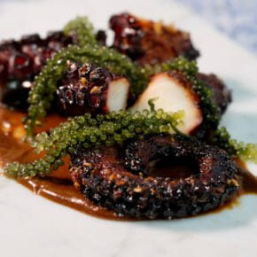 Balsamic glazed octopus on a black garlic and anchovy puree Appetiser Featured-More Favorites Inspired by the flavors of the Mediterranean Main Course Seafood Tapas