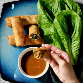 duck-herb-spring-rolls-very-special-sauce