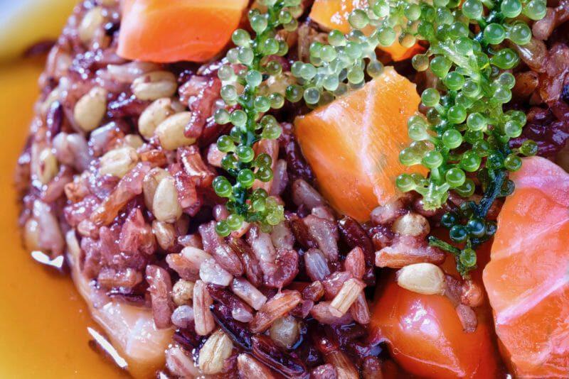 mixed-rice-chazuke-miso-cured-salmon-close