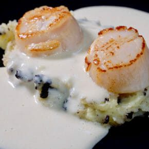 Seared scallops with roasted garlic sauce on mash spiked with black pudding Appetiser Featured-More Favorites Seafood